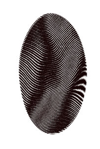 Fingerprint 2: A graphic representation of a fingerprint in black ink.