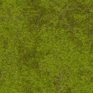 Green Texture: A very high resolution texture in earthy colours. In a smaller size could be grass. Makes a great texture.