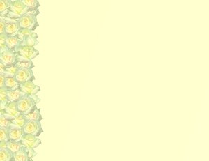 Simple Rose Border 5