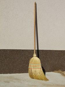 common broom