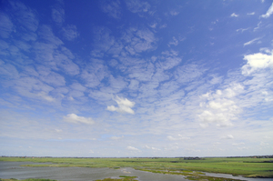 landscape: 