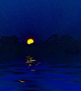 Moonrise 1: A moon rising behind silhouetted trees reflected in water with a magical starry sky. You may prefer:  http://www.rgbstock.com/photo/nX4Xg3I/Swirly+Branch  or:  http://www.rgbstock.com/photo/mR30UG0/Giant+Moon+Over+Water
