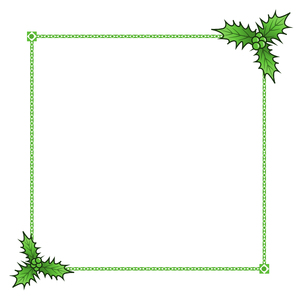 Holly Border 3