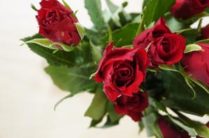 Roses Top