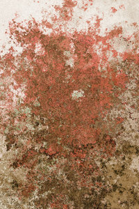 Rusted Background 5