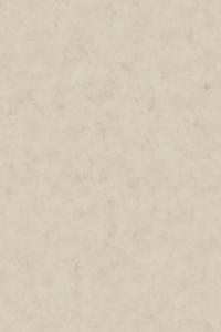 Hi-res Parchment 1