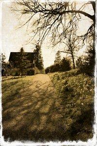 Old postcard source