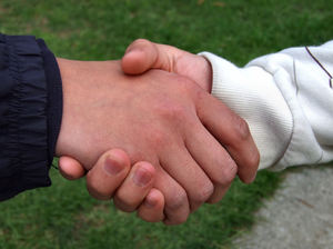 handshake1: handshake between friends