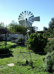 backyard windmill1