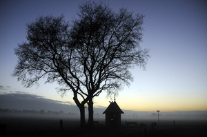 Chapel: last light of the day; an old Catholic chapel under an tree.