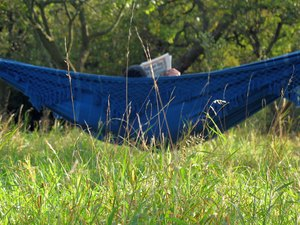 Relax...: Scene in the green-