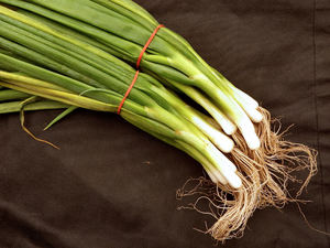 spring onion bunches1