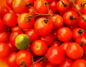 cherry tomatoes2: small gourmet cherry tomatoes