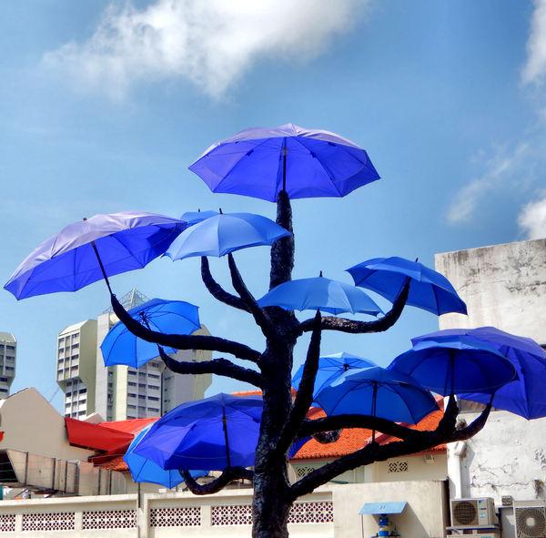 umbrella trees garden3