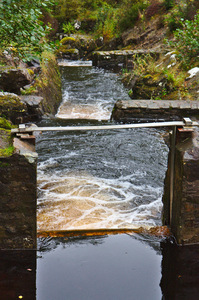 Fish ladder: Fish ladder at Rogie Falls, near Garve, north west of Inverness in Scotland.