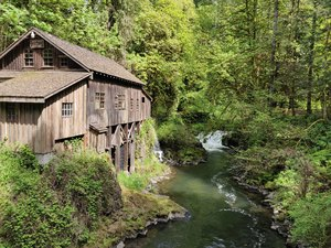 Gristmill in the Woods