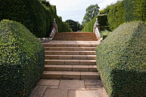 Garden steps and topiary