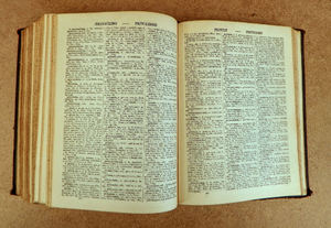 old Latin school dictionary3