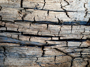 cracked wood