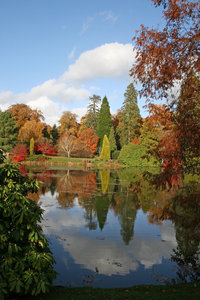 Lakeside vignette: View of a lake planted with ornamental trees in a park in East Sussex, England, in autumn.