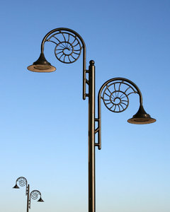 Ammonite lamps