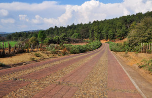 Rural road: Rural cobblestone road