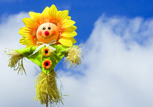 Cute Scarecrow: A cute windowbox scarecrow against a summer sky with fluffy clouds.  Lots of copyspace.