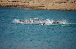 Swimmers in the reservoir