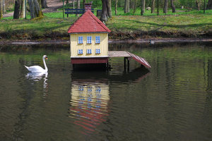 Swan and his house 3