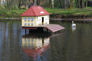 Swan and his house 1