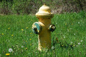 Fire Hydrants 1