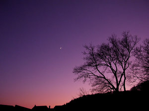 New Moon at Dusk 1