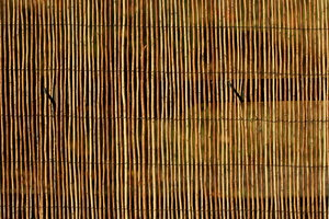 Bamboo Background: Bamboo fence for background