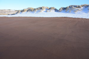 Winter beach 1