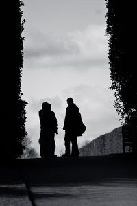 Meeting: Black and White silhouette of people meetinh