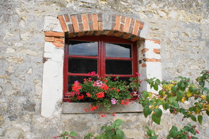 Window: A farm window with flowers