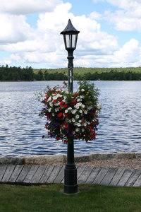 Summer Lamp Pole: Lamp pole decorated with a hanging flower basket on the waterfront of Shelburne, Nova Scotia, Canada.
