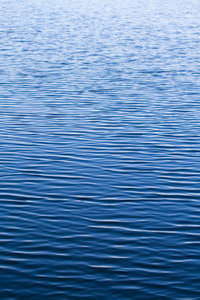 Water_1: A small lake watersurface