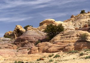 Sandstone formation: sandstone formations in Dana National Park, Jordan