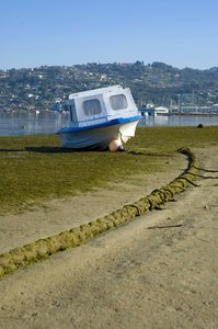 High & Dry: Small cabin boat at low tide.NB: Credit to read