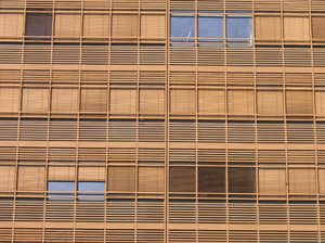 windows and blinds texture
