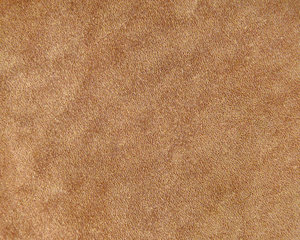 Smooth Tan Leather