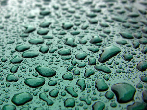 Rain Drops: Rain drop texture on a car hood.