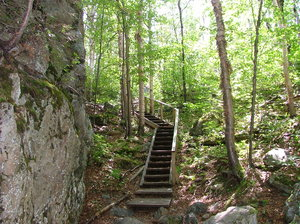 Stairs in the forest: Took in Aiguebelle's Park, Abitibi, Québec, Canada.