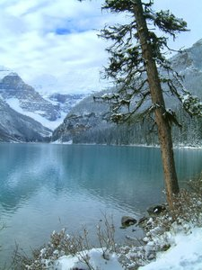 Lake Louise 2: Some other photos I took when I was on vacation in Lake Louise last October.(Lake Louise series)