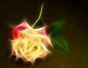 Abstract Rose 4