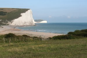 Meadow, cliffs and beach: View of the beach and cliffs of the Seven Sisters, Sussex, England.