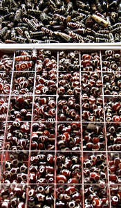 beady eyed: selections of dzi or eye beads for sale to be made into necklaces, bracelets or amulets