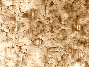 Crazed Streaky Paint 2: Cracked and streaky paint in shades of sepia.
