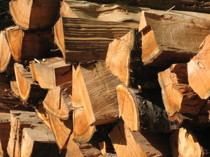 piled wood